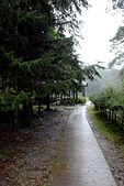 福山植物園-20111214:福山植物園-20111214-148 (Custom).JPG