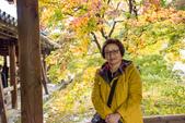 20151118_京都賞楓行_第三天-東福寺:DSC_5856.JPG