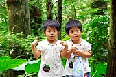 雙胞胎成長日記-東眼山-20090912:東眼山健行-20090912-145 -S.jpg