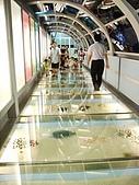 臺灣玻璃館:20061002101445.jpg