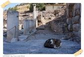 JOURNEY遊亞洲08/2014_土耳其11日遊_Day 8:34_Ephesus Ancient City_24.JPG