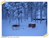 JOURNEY遊歐洲02/2016_芬蘭10日遊_Day 5:14_哈士奇雪橇_01.JPG