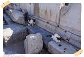 JOURNEY遊亞洲08/2014_土耳其11日遊_Day 8:58_Ephesus Ancient City_48.JPG