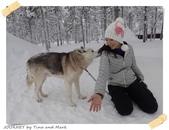 JOURNEY遊歐洲02/2016_芬蘭10日遊_Day 5:15_哈士奇雪橇_02.JPG