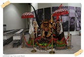 JOURNEY遊東南亞04/2013_峇里島、日惹五日遊_Day 4:17_Leaving Bali_07.JPG