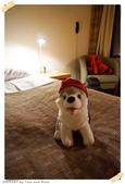 JOURNEY遊歐洲02/2016_芬蘭10日遊_Day 6:100_Lapland Hotel Sky Ounasvaara_10.JPG