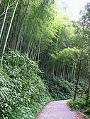 藤枝森林遊樂區:051251