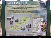 美濃新威森林公園:0121-315