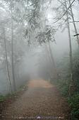 再訪藤枝國家森林遊樂區:090124-1 (02).jpg