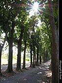 美濃新威森林公園:0121-304