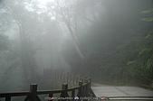 再訪藤枝國家森林遊樂區:090124-1 (04).jpg