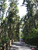 藤枝森林遊樂區:051201