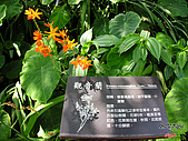 藤枝森林遊樂區:051207