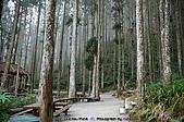 再訪藤枝國家森林遊樂區:090124-1 (06).jpg
