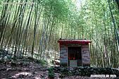 八仙山國家森林遊樂區:080910 (13).jpg