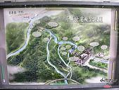 藤枝森林遊樂區:051256