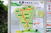 武陵綠色隧道:130530-5 (12).jpg