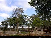 美濃新威森林公園:0121-317