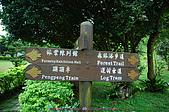 池南國家森林遊樂區:090220 (16).jpg