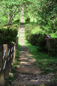 知本國家森林遊樂區:130530-6 (27).jpg