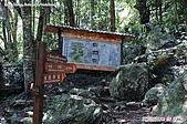 八仙山國家森林遊樂區:080910 (08).jpg
