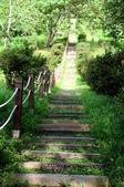 知本國家森林遊樂區:130530-6 (28).jpg