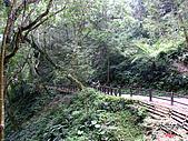 藤枝森林遊樂區:051246