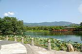 台東關山親水公園:DSC_1833.JPG