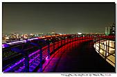 彰化大佛夜景:101218-4 (13).jpg