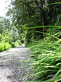 藤枝森林遊樂區:051208