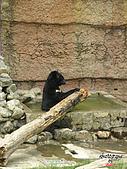 高雄壽山動物園:051309