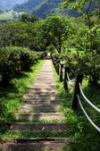 知本國家森林遊樂區:130530-6 (31).jpg