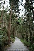 再訪藤枝國家森林遊樂區:090124-1 (13).jpg