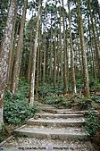再訪藤枝國家森林遊樂區:090124-1 (14).jpg