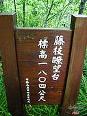 藤枝森林遊樂區:051223