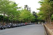 鳳山熱帶園藝試驗分所:130320 (12).JPG