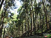 藤枝森林遊樂區:051204