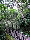 藤枝森林遊樂區:051248