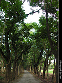 美濃新威森林公園:0121-320