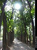 美濃新威森林公園:0121-302