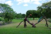 台東卑南文化公園:130530-3 (16).jpg