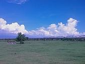 竹寮自然生態園區:IMAG0516.jpg