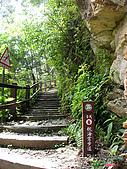 藤枝森林遊樂區:051209