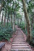 再訪藤枝國家森林遊樂區:090124-1 (17).jpg