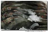 """東港拍魚""""趣"""":101211 (27).jpg"""