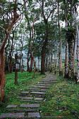 池南國家森林遊樂區:090220 (04).jpg