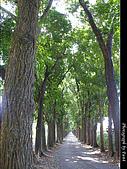 美濃新威森林公園:0121-303