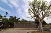 高雄孔宅綠園:130112 (11).jpg