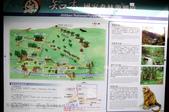 知本國家森林遊樂區:130530-6 (14).jpg