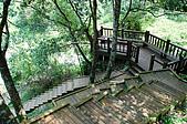 八仙山國家森林遊樂區:080910 (20).jpg